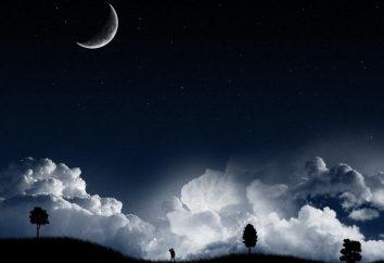 Os fatos mais interessantes sobre o sono. Fatos interessantes sobre sono e sonhos