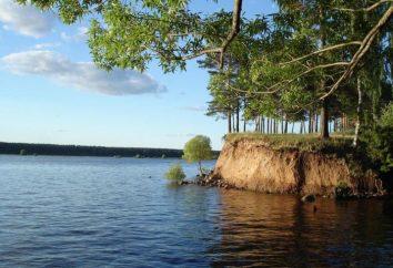 Descansar selvagem no Volga. Recreação na margem do rio