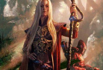 Corse di fantasia: elfi, fate, gnomi, troll, orchi. Libri di un genere di fantasia