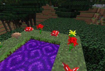 """Come costruire un portale per la foresta Twilight """"Maynkraft"""""""