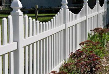 Comment peindre la clôture? Qu'est-ce que la peinture à choisir pour cela?
