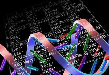 codice trigemino e unità funzionale del codice genetico