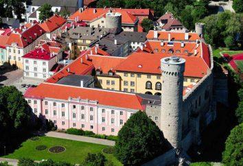 Burg auf dem Domberg: Geschichte und Heute