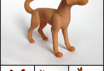 Cómo esculpir perro de plastilina forma rápida y sencilla?