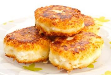 Cheesecakes de fromage cottage dans le four: recette. fromage cuisson air de cheesecakes au four