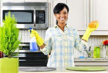 Os melhores produtos de limpeza para a cozinha: uma visão geral, fornecedores de aplicativos e comentários