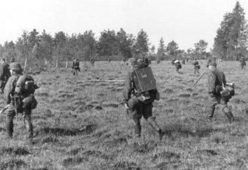 """Octava división de caballería de la SS """"Florian Geyer"""": la creación, la historia y los comandantes"""