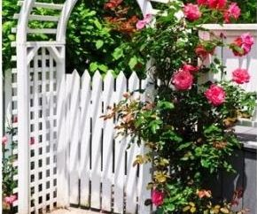 Como decorar seu quintal com as mãos – de falar com ação!