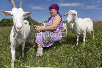 Resultado de imagen de campesina con cabra y ordenador