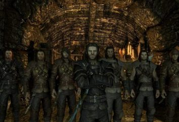 "Ladri missioni di Guild ""Skyrim"", ""Pursuit"""