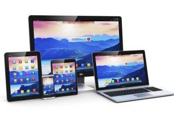 Ordinateur portable – il est pour l'appareil? Les types et les ordinateurs portables