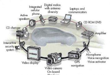 ARP, RARP, IP, ICMP. Co jest używany jest protokół ARP?