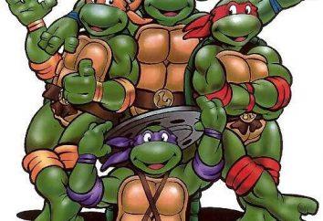 Nazwa Żółwie Ninja? Kto jest kim w zielonych superbohaterów