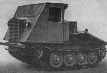 TDT-40 – Urgroßvater von modernen Maschinen lesopovalnyh
