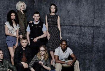 """Die Serie """"Achter Sense"""": Schauspieler und Rollen"""