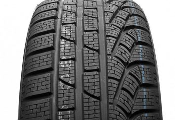 Quels sont les pneus d'hiver de haute qualité en Finlande?