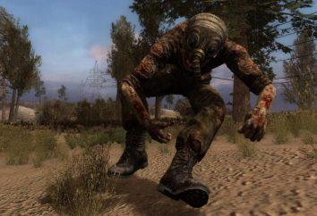 """Come installare un mod per """"STALKER: Call of Pripyat"""" e come attivarlo?"""