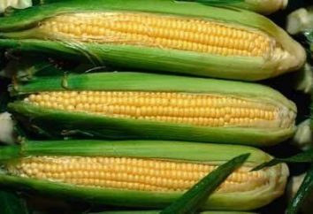 Cómo cocinar el maíz