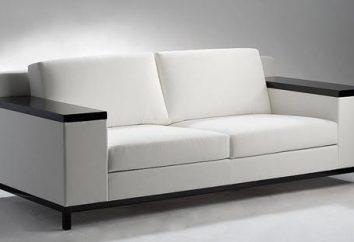 Sofá com braços de madeira: vantagens de design