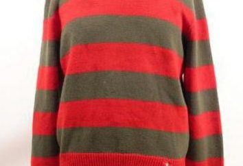 Freddi Kryugera sweter: historia obrazu, opis i ciekawych pomysłów