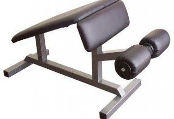Symulatory do prasy i najlepszych ćwiczeń: Roman krzesło
