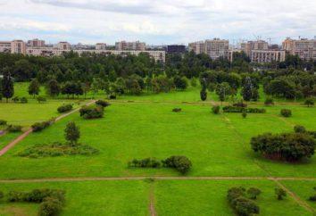 Polyustrovsky Park – zielony teren rekreacyjny Krasnogvardeysky Rejonowy