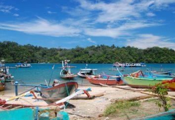 Énigme de l'île de Java: des informations intéressantes et utiles pour les touristes
