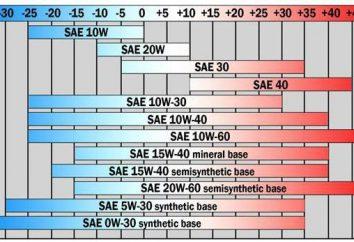 Która ropa jest lepsza – 5W30 lub 5W40 (zimą)? Najlepszy olej na zimę