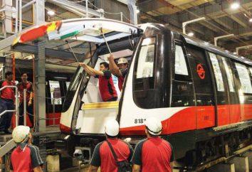 Technologia procesów transportowych: komu pracować na tej specjalności?