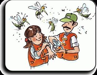 picadas de mosquito pomada – os prós e contras de tais drogas.