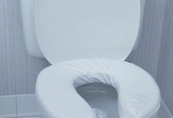 Jakie są wymiary toalety