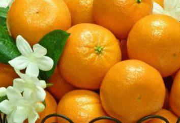 Cómo mantener las mandarinas de un Año Nuevo en fresco