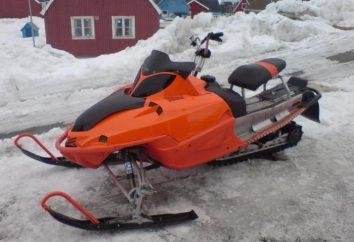 Domowy środek transportu śniegu. Nietypowe środki transportu na śniegu