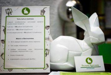"""Anti-café """"White Rabbit"""" (distretto Golyanovo): Descrizione, recensioni, prezzo"""