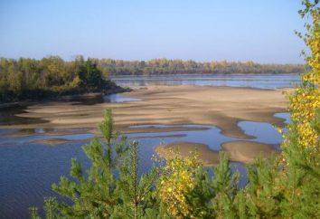 Fiume Mologa: descrizione. regione di Vologda, il fiume Mologa