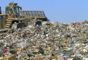 Gestão de Resíduos Sólidos: Problemas e Perspectivas