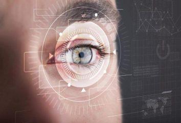 fatti interessanti circa l'occhio e la visione umana