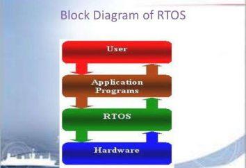Exemplos de sistemas operacionais em tempo real. Exemplos de sistemas de funcionamento de rede