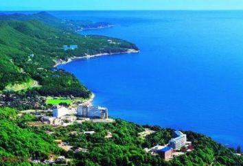 Dzhubga: opiniones de las vacaciones perfectas