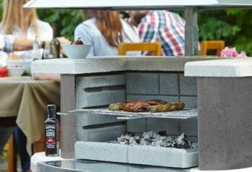 Capots pour les barbecues: vues sur la photo. Comment faire une hotte pour le barbecue avec ses propres mains