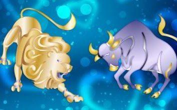 Zgodność samiec lwa i samica Byk: wszystkie aspekty
