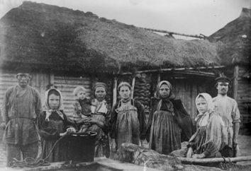 Conciliador y su papel en la reforma campesina de 1861