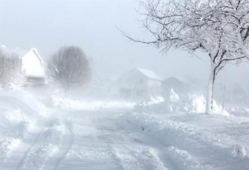 O que é uma tempestade de neve? Tempestade de neve e nevasca – a mesma coisa?