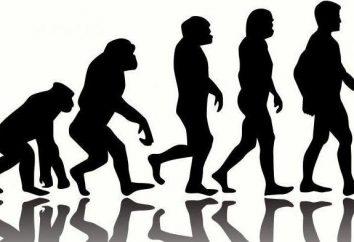 évolutionnisme mondiale comme le paradigme de base de la science moderne