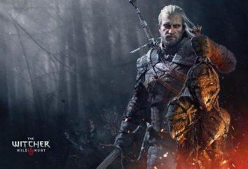 """Come aumentare FPS in """"The Witcher 3""""? Che cosa è un FPS nei giochi?"""