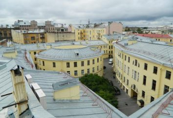 Dvory-studnia w Petersburgu: adresy, historia