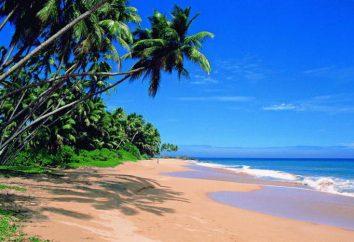 Goas Pearl 2 * (India, Nord Goa, Candolim): foto e recensioni