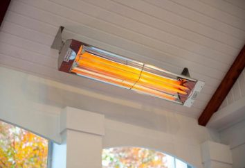 Los calentadores eléctricos: tipos, descripción, características y opiniones