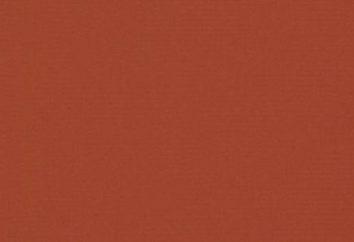 Terracotta – il colore del giorno