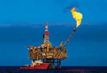 Propiedades fisicoquímicas del gas natural. La producción y el uso de gas natural